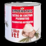 Setas de cultivo (pleurotos ostreatus) 3kg